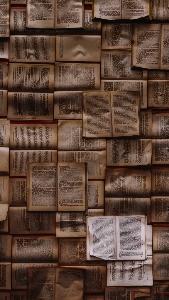 EVİNİZDEKİ UNUTULAN KİTAPLAR